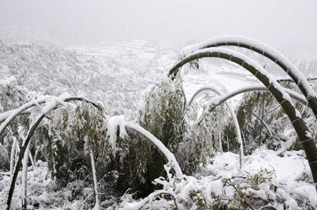 china-snow-storm.jpg