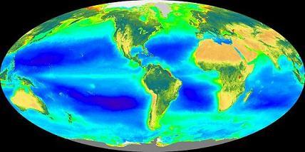 globe1-s2.jpg