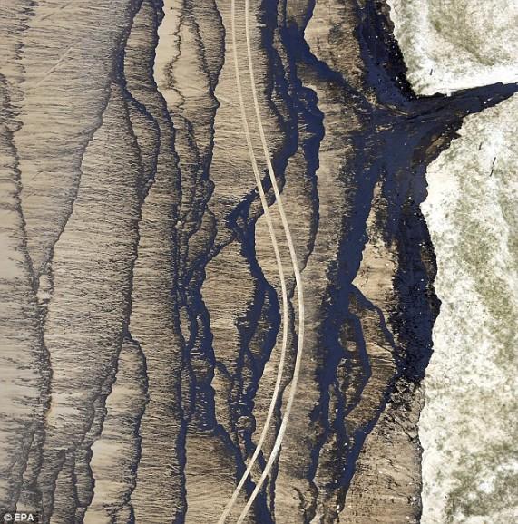 tire-tracks-on-beach-near-cape-moreton-on-moreton-island-queensland