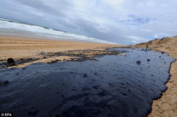 warana-beach-on-queensland-s-ssc-epa