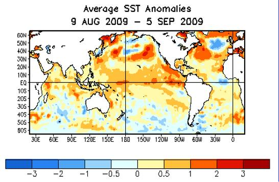 Avg SST anom global 8sep09