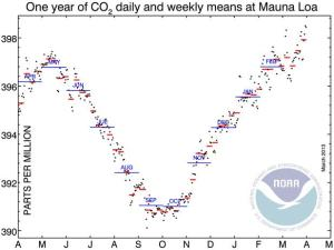 CO2-1y-dwm