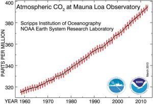 CO2-MLO
