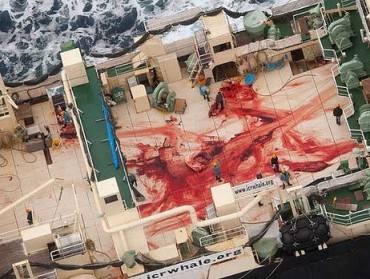 bloodbath on Nisshin Maru-s
