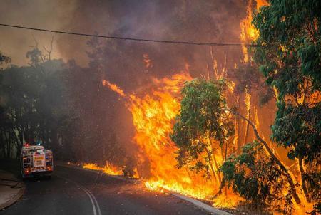 bushfire aus jan 2014